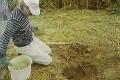 GRASDORF CROP CIRCLE E IL MISTERO DELLE PLACCHE DI METALLO
