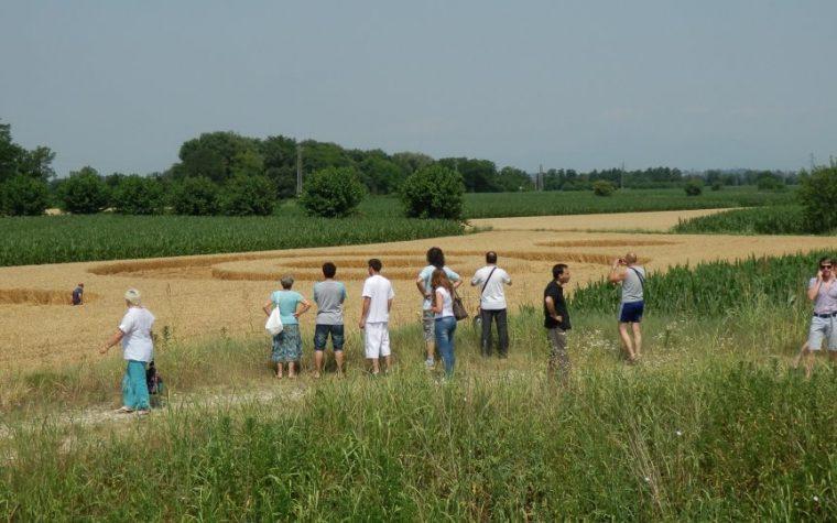 SALT DI POVOLETTO COMPARE CROP CIRCLE 30.06.2012