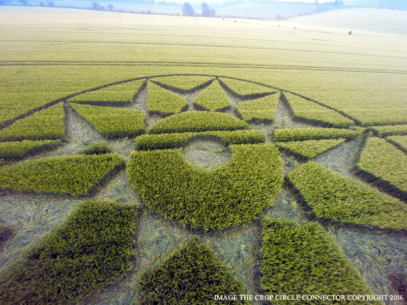 WILLOUGHBY HEDGE COMPARE CROP CIRCLE 5 GIU. 2016