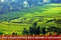 INDONESIA COMPARE CROP CIRCLE IL 23.01.2011