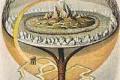 CERCHIO NEL GRANO COMPARE IN INGHILTERRA A BADBURY RINGS IL 17 GIUGNO 2014