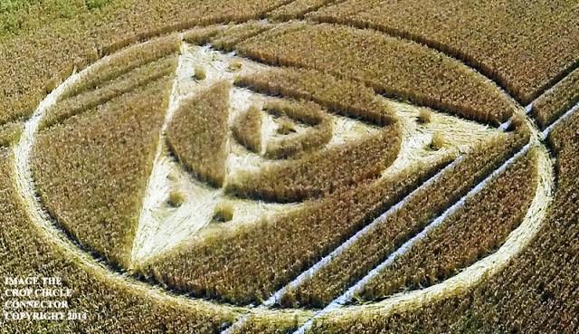 cerchio nel grano comparso nel wiltshire Etchilhampton-Hill il 27 luglio 2014 foto 2