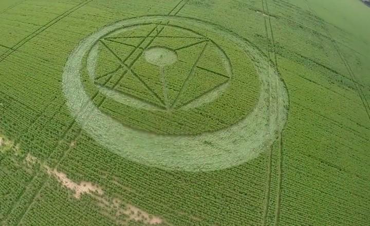 cerchio nel grano rochford il 14 giugno 2014 foto 2