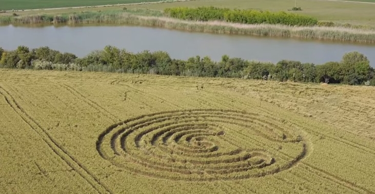 cerchio nel grano serbia turija 08 giugno 2014 foto 2