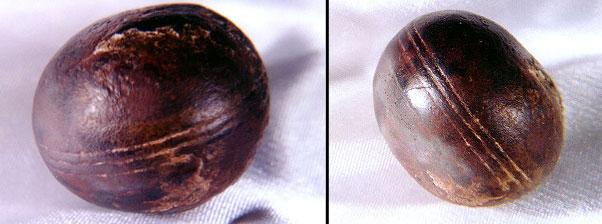 ooparts  le sfere di klerksdrop